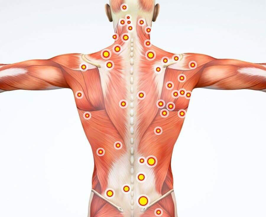 chiropractor pressure points